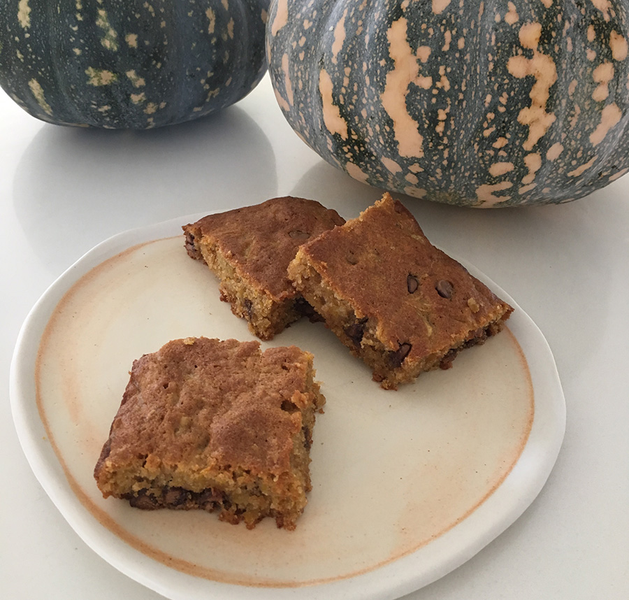 Pumpkin and choc chip slice